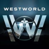 Westworld, Saison 1 (VOST)
