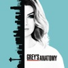 Grey's Anatomy - Ring of Fire  artwork
