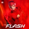 Finish Line - The Flash Cover Art