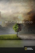 Fisher Stevens - Before the Flood  artwork